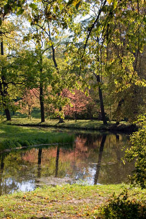 noiseless: The river in autumn park