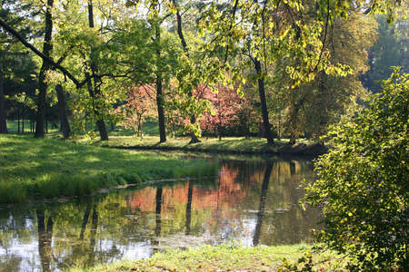 unruffled: The river in autumn park