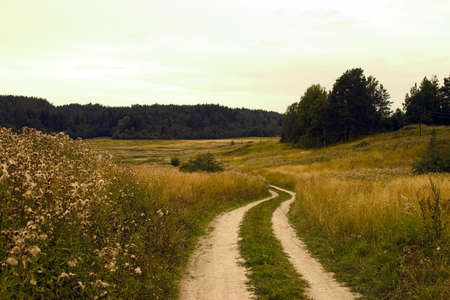Road to a field, rural
