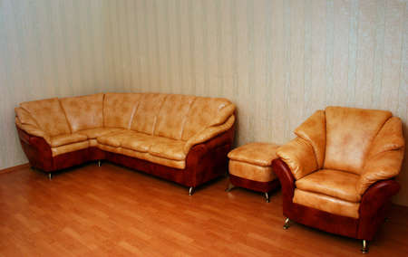Elegant sofas - an interior of a living room