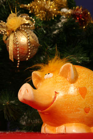 Yellow christmas piggy Stock Photo