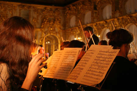 the symphony: Performance of an orchestra in a palace