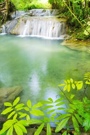 forest river: Waterfall in Chiangmai Thailand