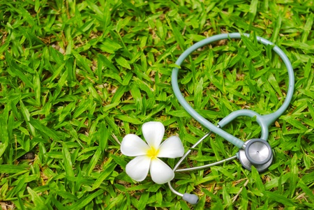 stethoscope and flower on grass  photo