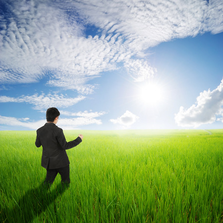 man in field: Happy business man in green rice field and clouds sky