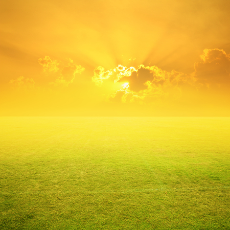 Green Grass field and sunset  for background