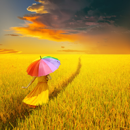 woman with umbrella: Beautiful woman holding multicolored umbrella in Yellow rice field and rain cloud sunset Stock Photo