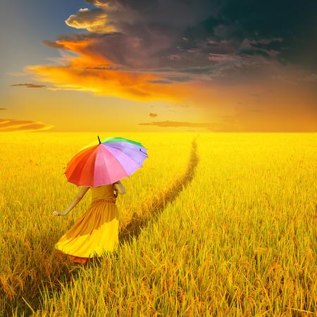 lluvia paraguas: Mujer hermosa que sostiene el paraguas multicolor en campo de arroz amarillo y la nube de lluvia atardecer Foto de archivo