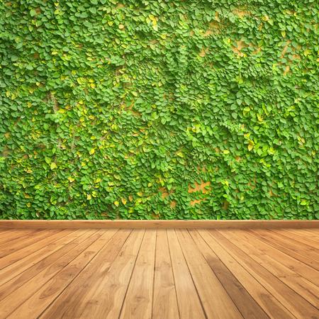 배경 벽과 나무 벽에 잎