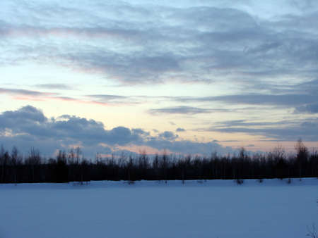 afterglow: Image of trees winter, forest, snow, sunset, afterglow, clouds, white, heaven