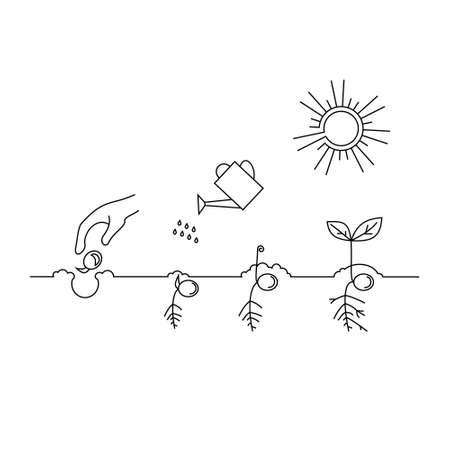 Brote de línea y el cultivo de plantas. hoja de carácter lineal, crecer árbol, jardín y flores, jardinería orgánica, la flora eco. infografía línea de tiempo de proceso de plantación de árboles, concepto de negocio diseño plano. Ilustración de vector
