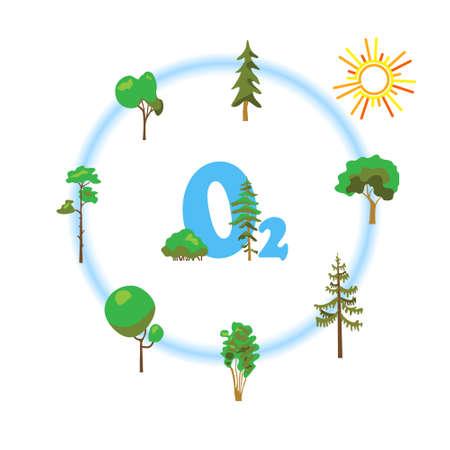 Zuurstof platte illustratie met planten. Natuurlijk, ecologie, ecologisch, zuurstof creatief grafisch concept. Natuurlijk eco zuurstof proces voor wetenschap, chemie, biologie.