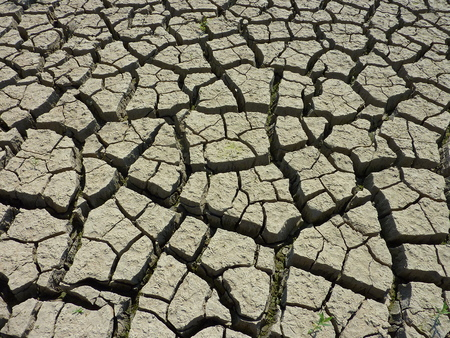colorized: Land with dry and cracked ground