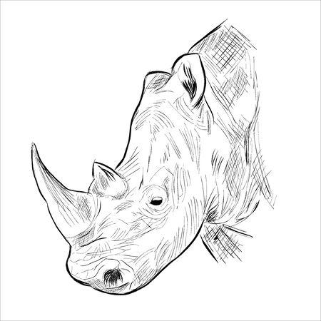 Rhino head Ilustração