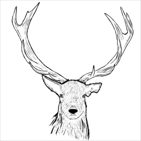 antlers silhouette: Deer head