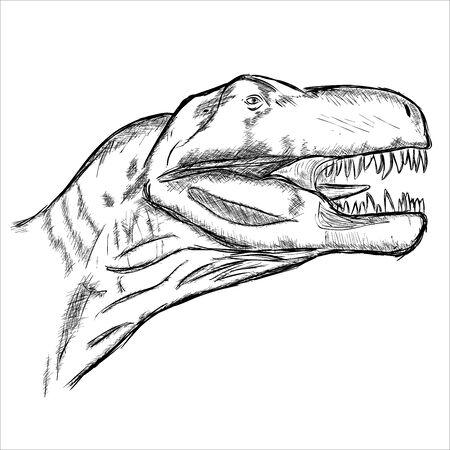 Tyranosaurus Rex Illustration
