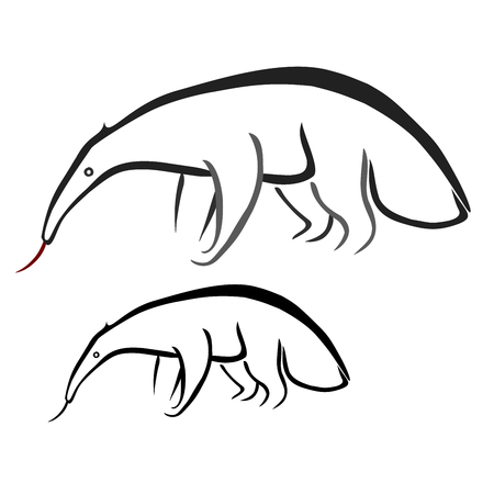 anteater: Ant-eater