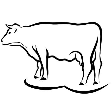牛のスケッチ