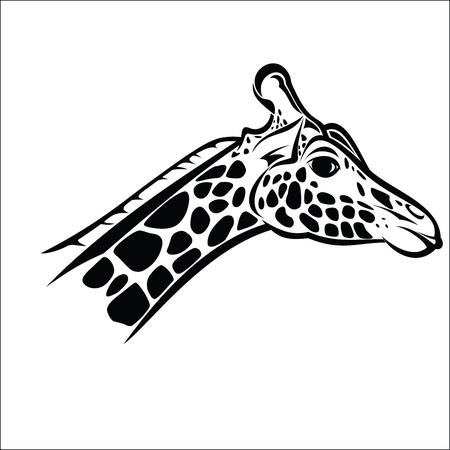 giraffa: Pista de la jirafa 2