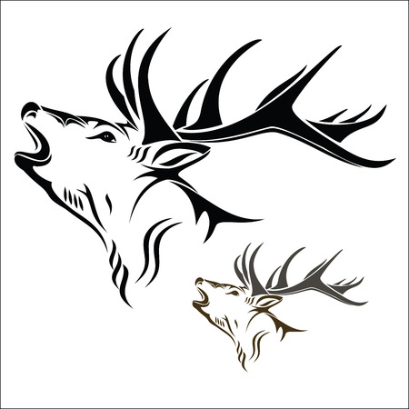 deer hunting: Deer head