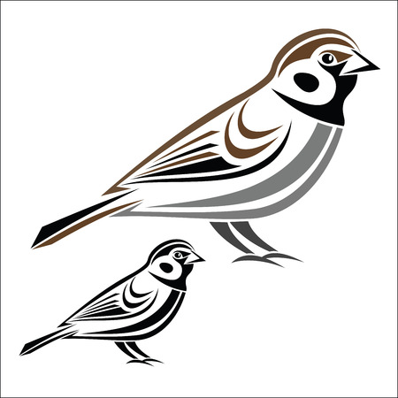 sketch out: House sparrow Illustration