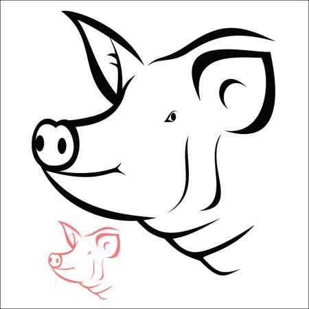 Schwein Kopf Standard-Bild - 38579131