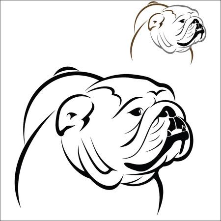 bulldog: Bulldog Inglés