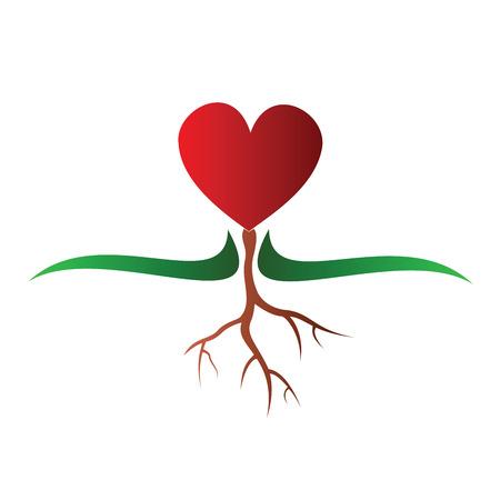 Growing heart