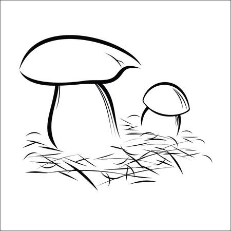 peat: mushrooms Illustration