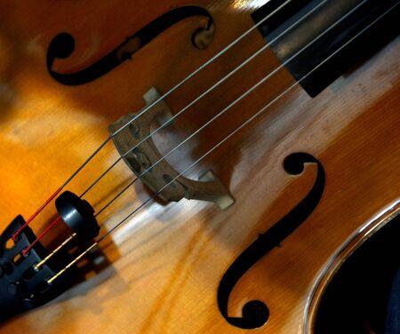 cellos: Cello Close Up