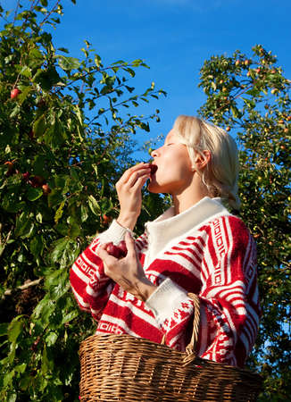 Attractive young blonde eating fresh plum in the garden. Harvesting season photo