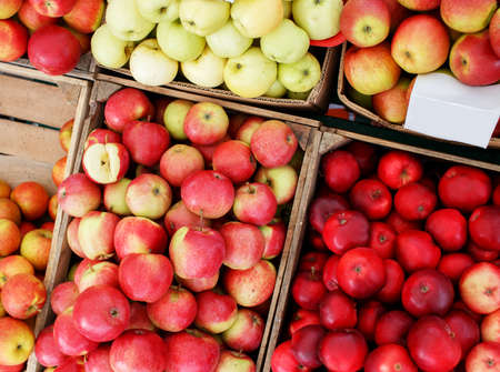Green, red and yellow apples in wooden crates photo
