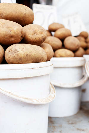 Row of white buckets stacked with earthy potatoes photo
