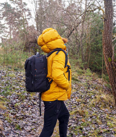 yellow jacket: Profile of a man in yellow jacket, black pants and backpack. Walking in a fores, looking up.