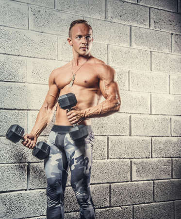 sixpacks: Shirtless muscular man in military pants holding dumbells over wall from gey bricks.