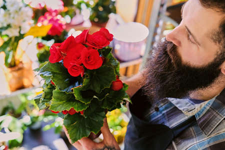 barber: The bearded stylish flower seller holds pink roses in a market shop.
