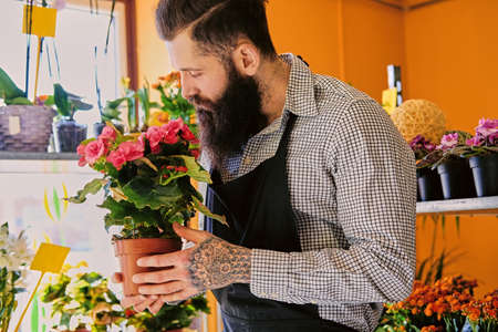 arm bouquet: The bearded stylish flower seller holds pink roses in a market shop.