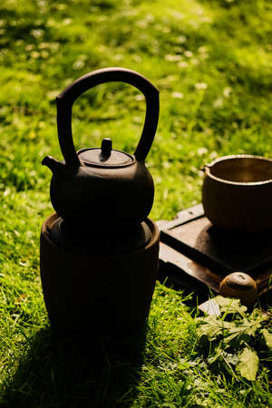 master: Chinese tea ceremony in a park.