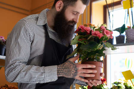 Professional male florist with beard and tattoo on his hand wearing uniform holds pot with a bouquet of flowers in flower shop.