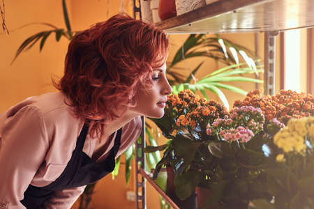Portrait of a sensual female florist, breathes a pleasant smell of fresh flowers.