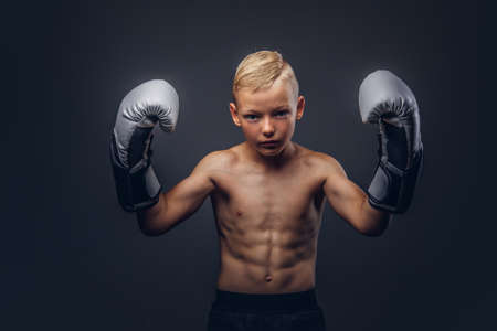 Young shirtless boy boxer with boxing gloves posing in a studio. Reklamní fotografie