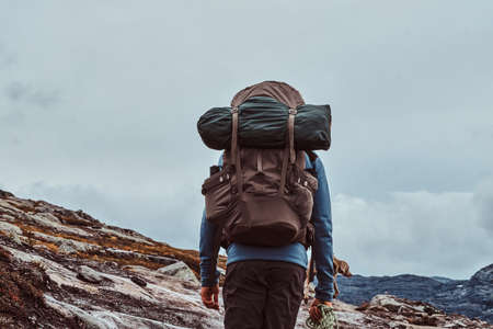 Tourist with his cute dog hiking in Norway mountains.