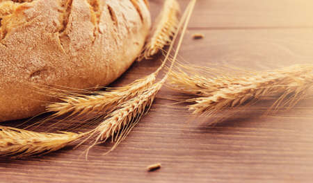 Freshly baked bread and spikelets of wheat. Stok Fotoğraf