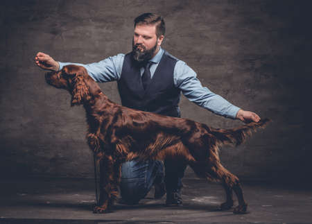 Middle-aged hunter dressed in elegant clothes sits on his knee and shows the full length of his purebred brown Setter. Studio photo against a dark textured wall