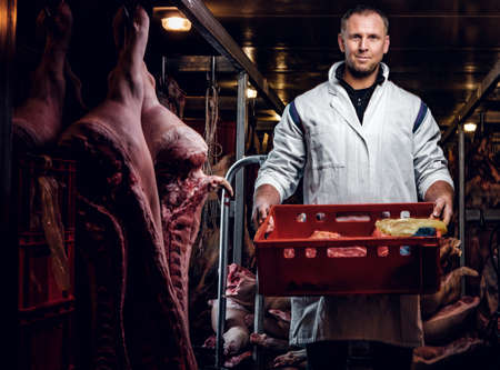 Cheerful butcher in workwear holding a box with meat pieces while standing in the midst of meat carcasses Stock Photo