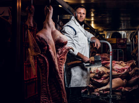 The butcher in workwear posing in a refrigerated warehouse in the midst of meat carcasses