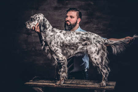 Middle-aged hunter showing his purebred English Setter who standing on a wooden pedestal. Studio photo against a dark textured wall