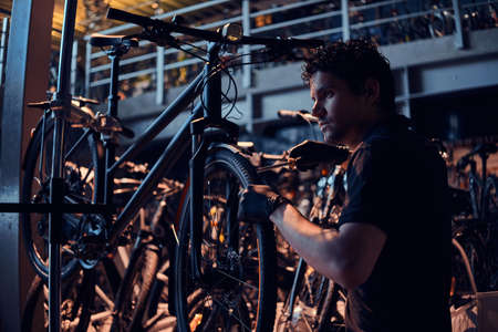 Diligent attractive mechanic is repairing customers bicycle at workplace. Stock Photo