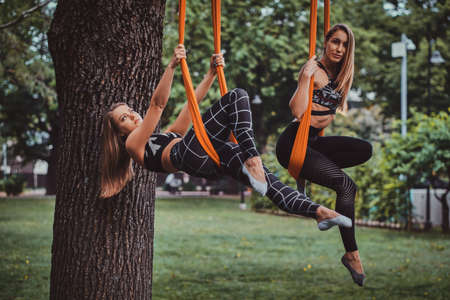 Two attractive cheerful womens are posing for photographer on the slings in the summer park.