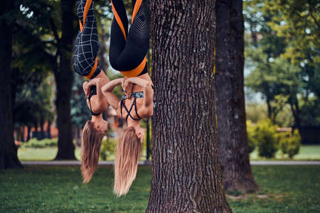 Two attractive sporty girls are hanging upside down on the slings in the summer park.